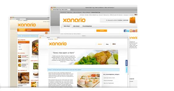 Beispiel xanario Design