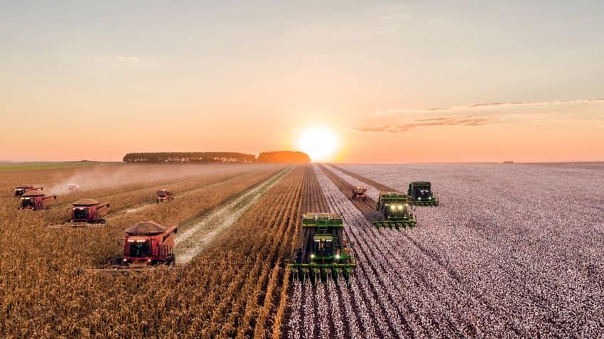 Urproduktion - die Landwirtschaft